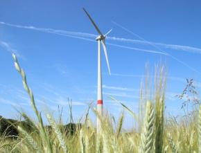 Neue Studien: Einstufiges Vergütungsmodell sichert ausgewogenen Windenergiezubau