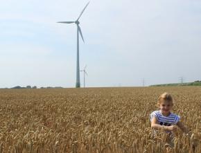 Neue NRW-Studie: Experten werten Ausschreibungen als großes Risiko für Bürgerenergie