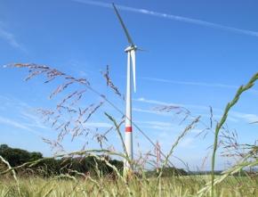 EEG 2016: Ausgewogenen Windenergiezubau ermöglichen