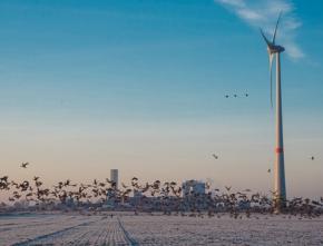 Energiewende in OWL zum Scheitern verurteilt