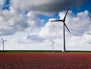 Windenergie: Landesentwicklungsplan verständlich