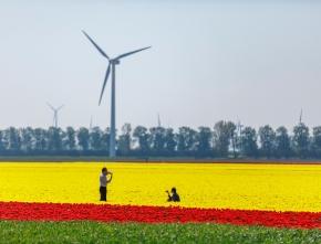 Windkraftausbau in NRW schwächelt auch 2020