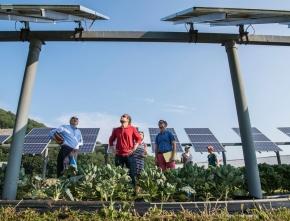 NRW geht wieder leer aus bei Solar-Ausschreibung
